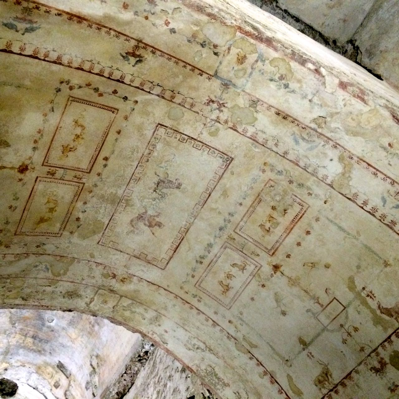 paintings on the ceiling of the domus aurea