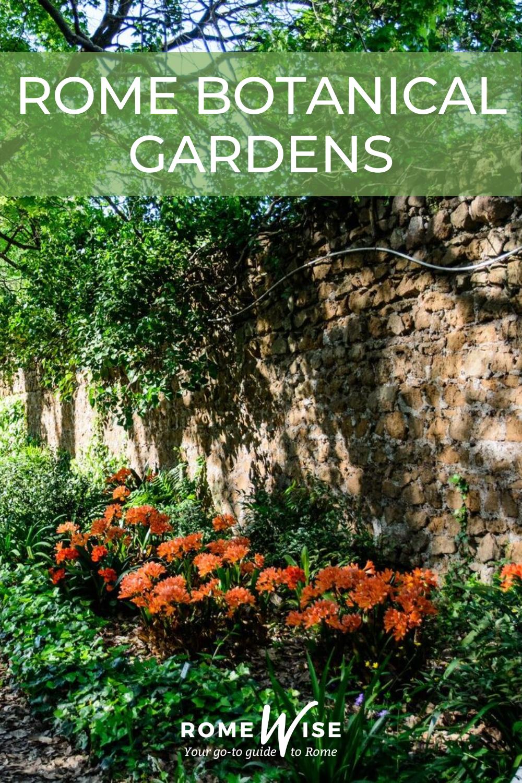 rome botanical gardens