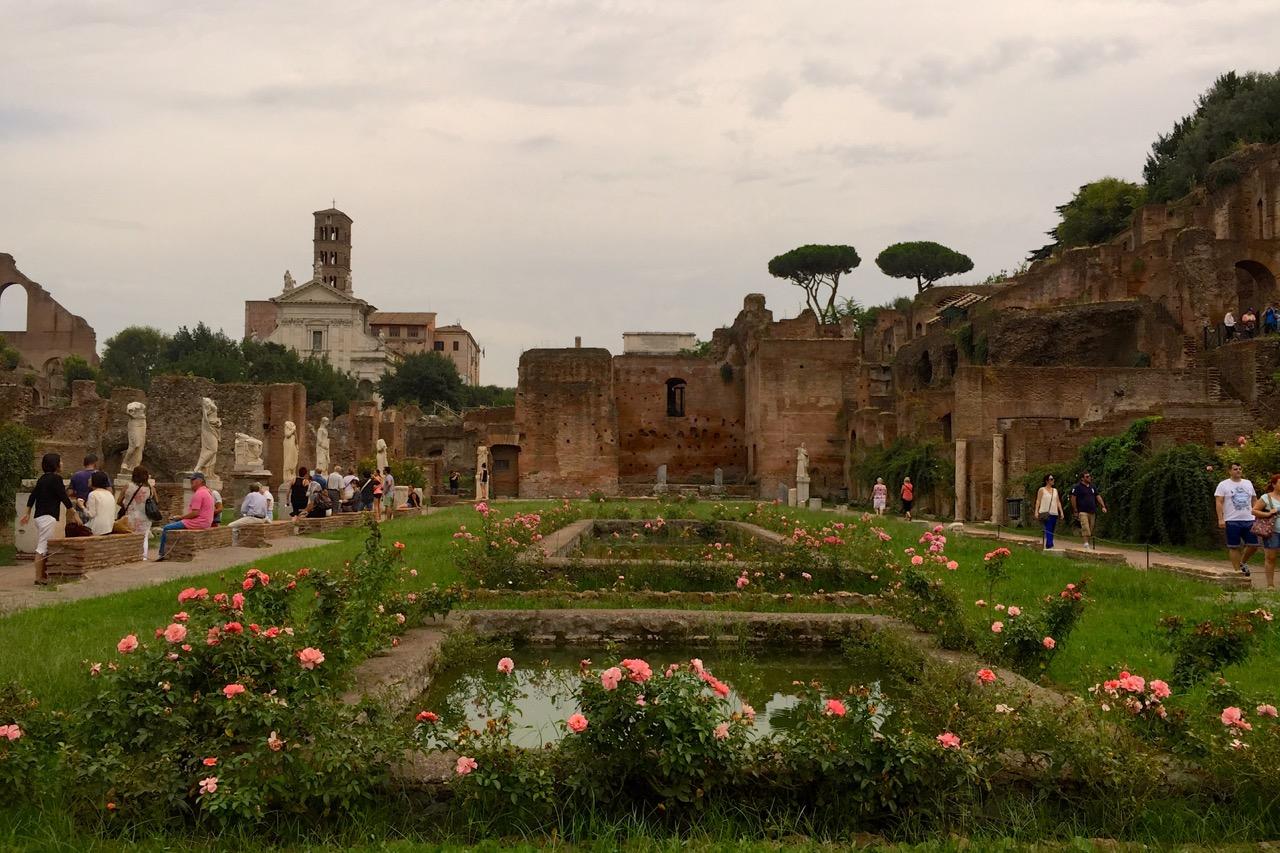roses in the roman forum