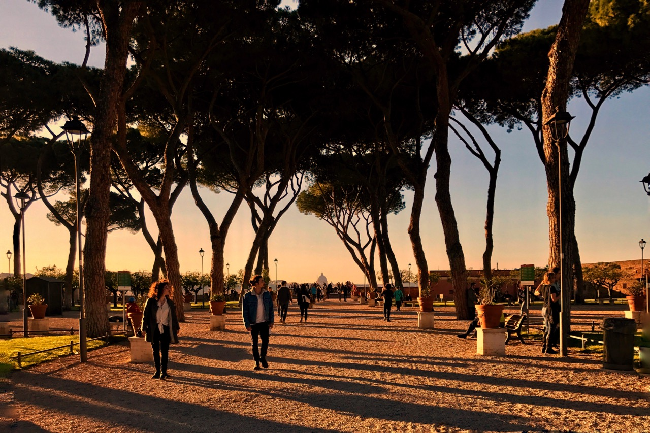 rome's orange tree garden at dusk
