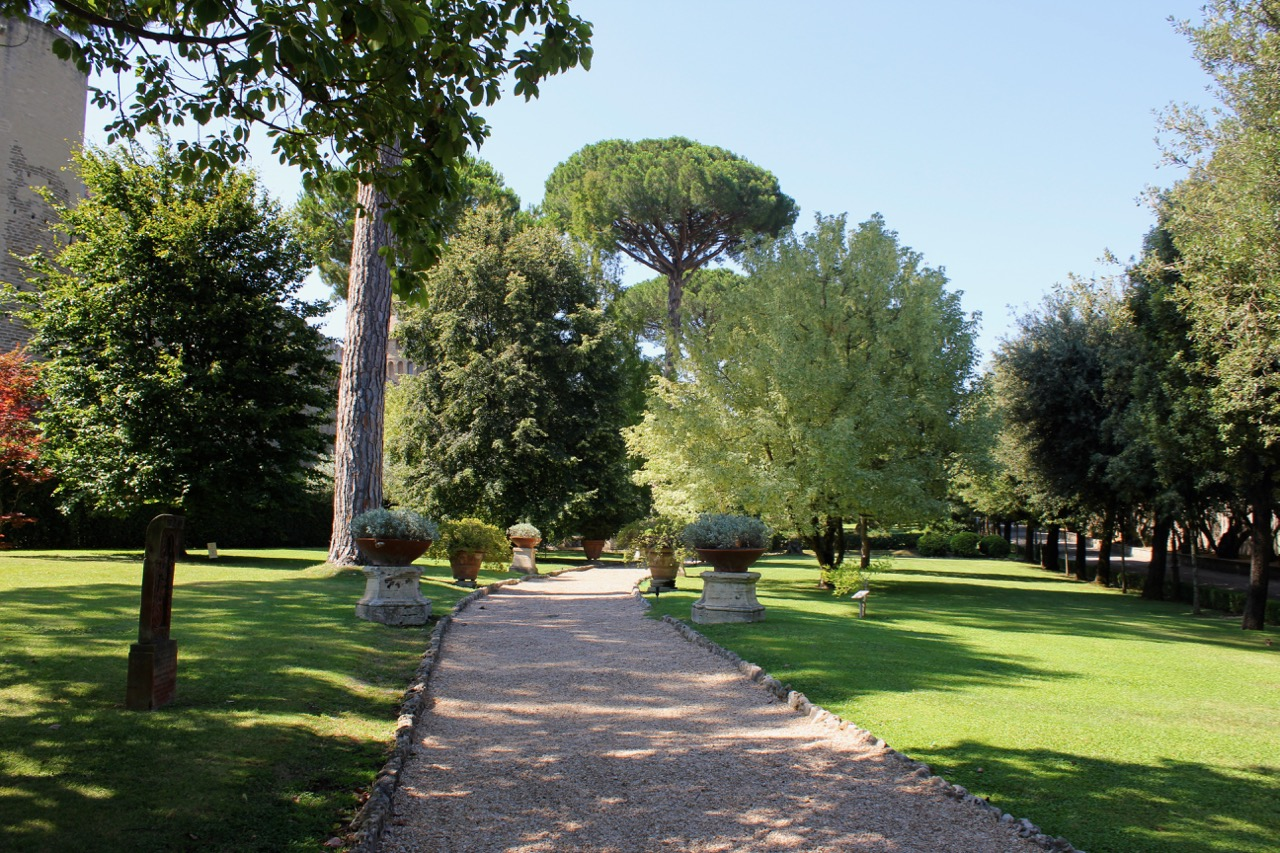 walkway among the trees in vatican garden