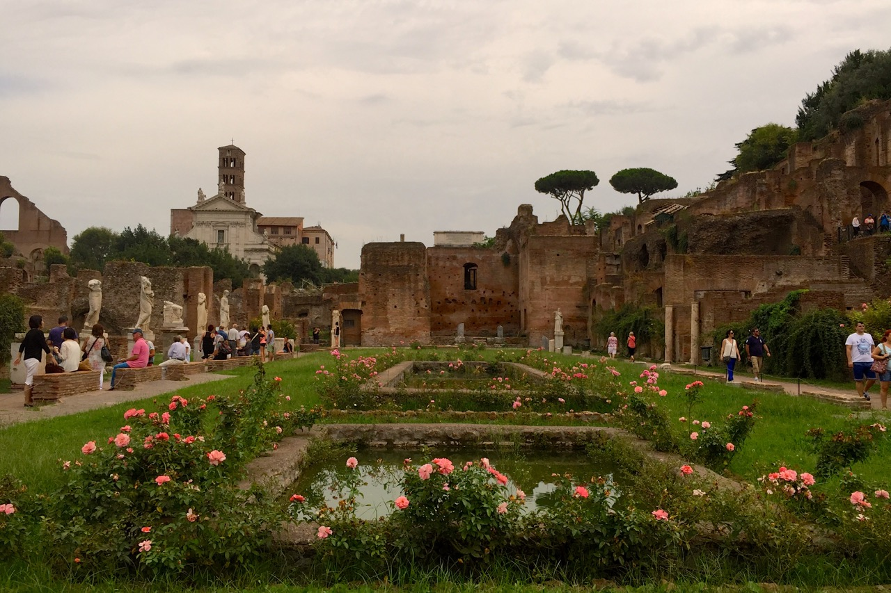 roses in the roman forum