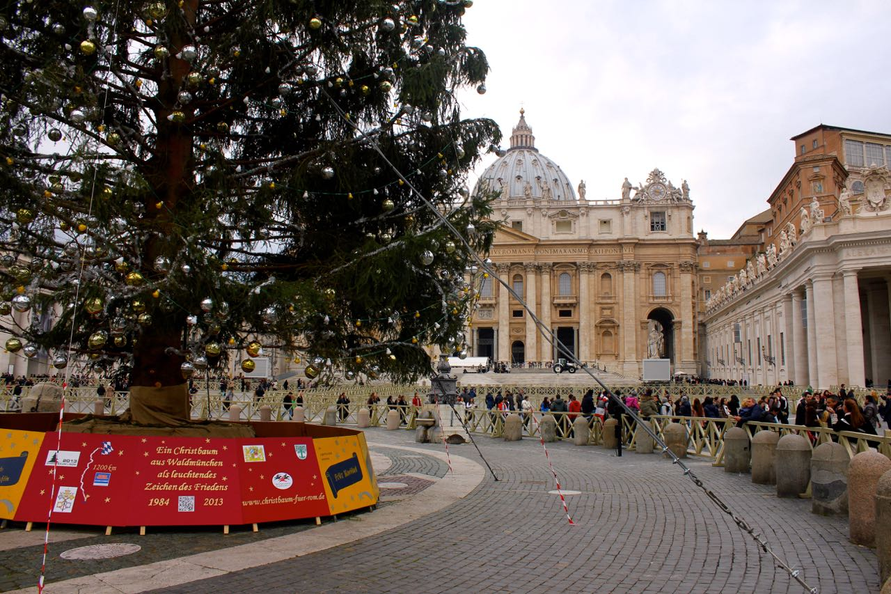 christmas tree in saint peters square