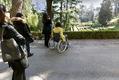 visiting the gardens at the vatican in a wheelchair