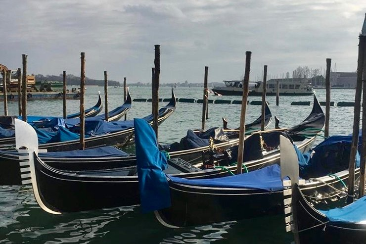 iconic gondolas moored in venice